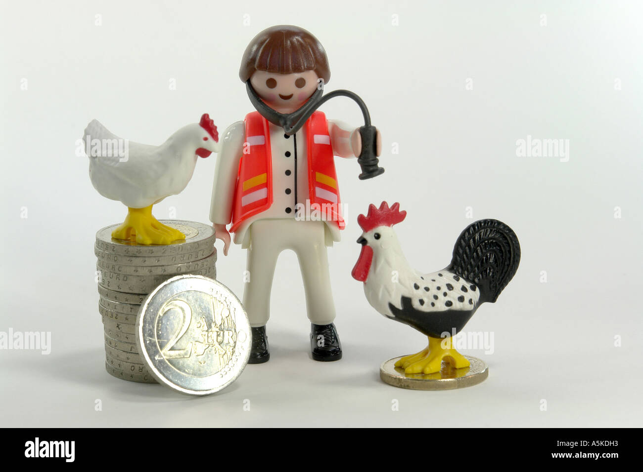 Symbol picture for the costs cause by the bird flu (investigations, disposal of dead animals, clearing-up - Stock Image