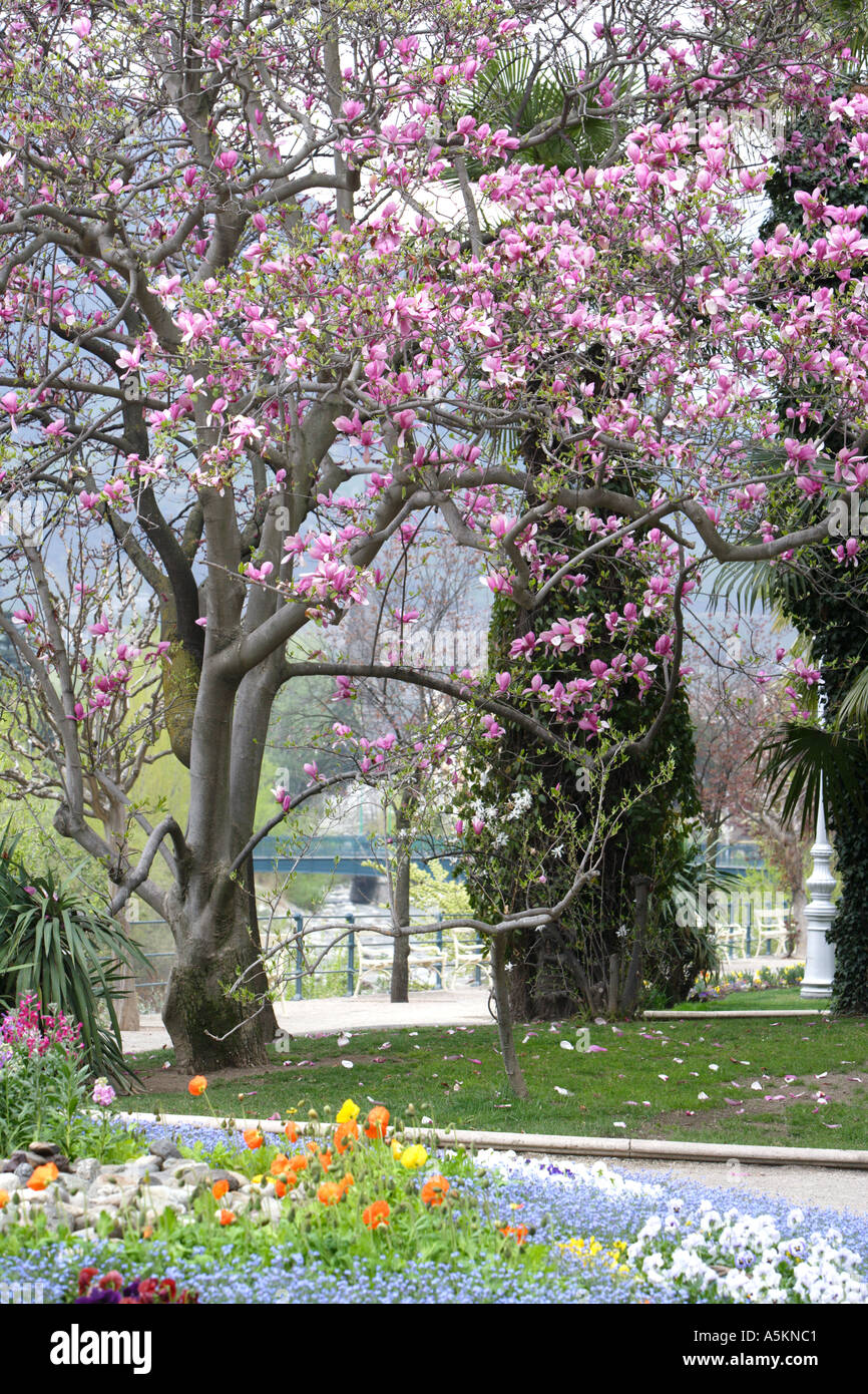 A park by one of the promenades in Merano Alto Adige Italy - Stock Image