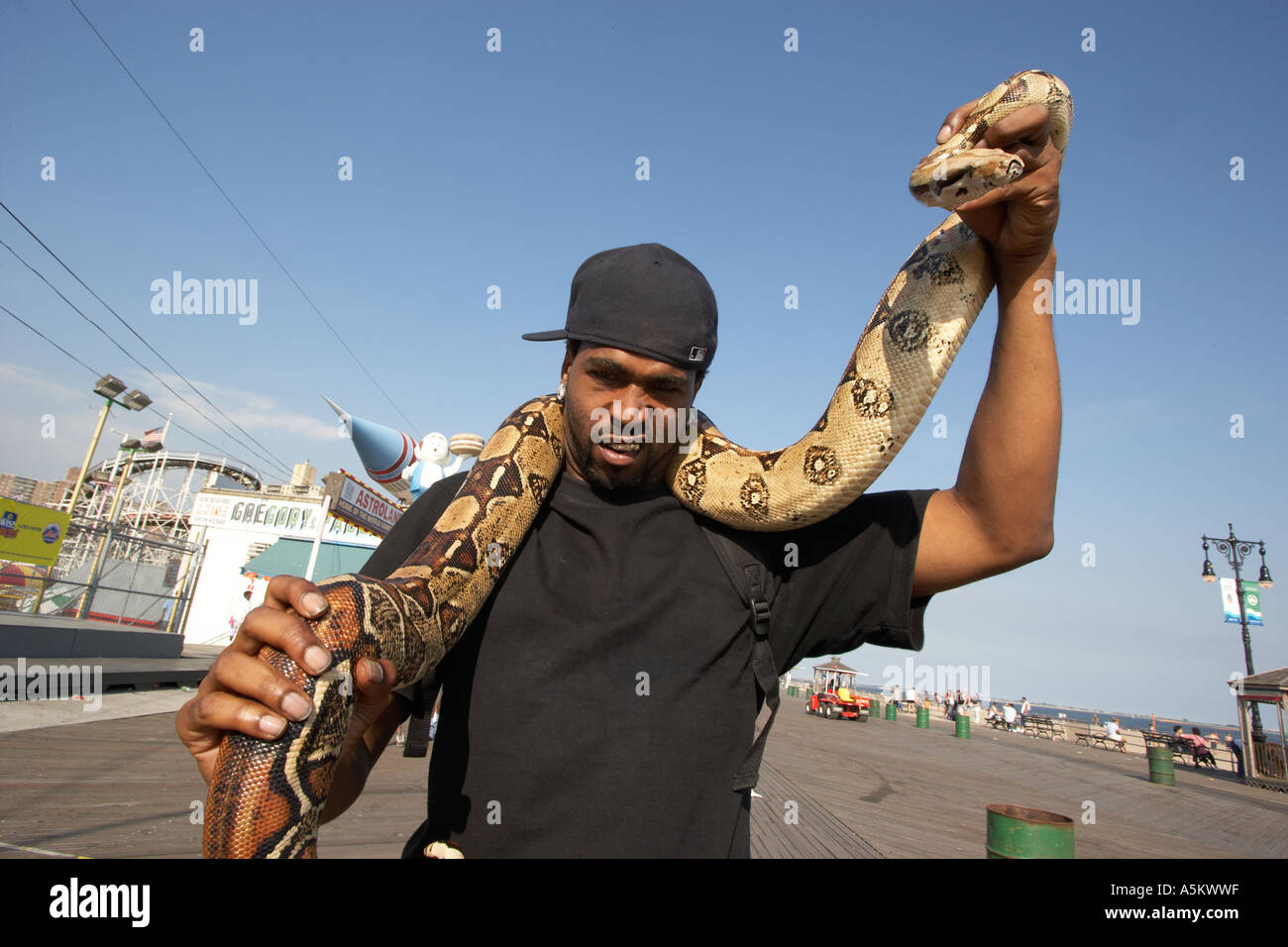 Man with pet python on the boardwalk at Coney Island - Stock Image