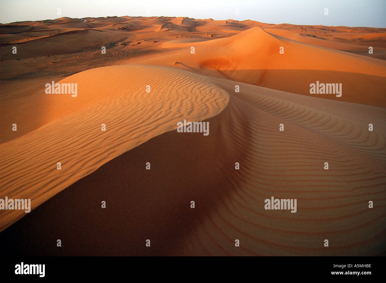 Waves of desert sand golden brown in colour natural Dubai