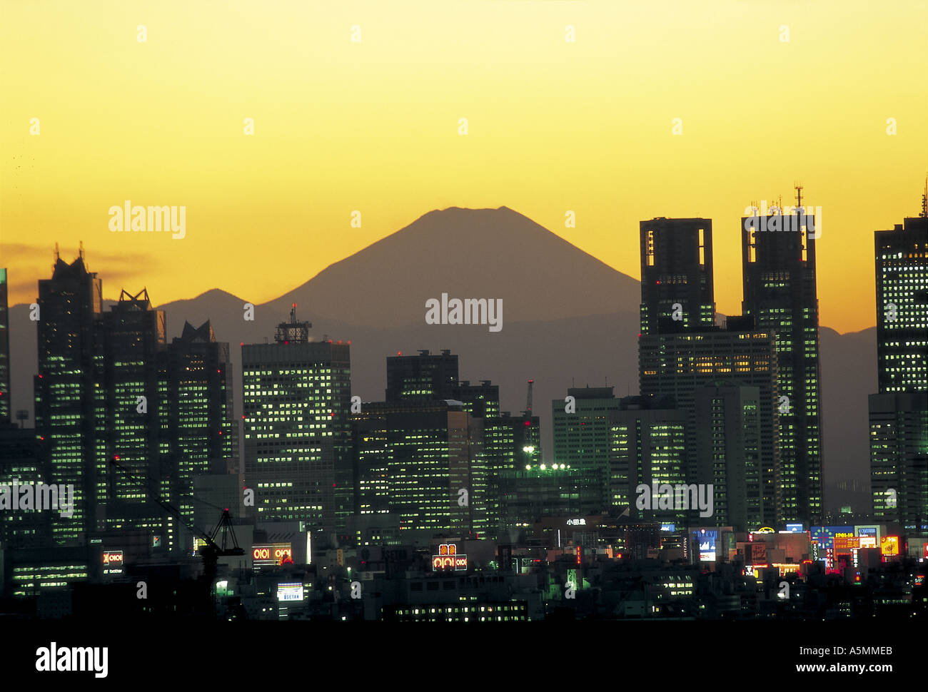 Mt Fuji and skyscrapers of Shinjuku district Tokyo Japan - Stock Image