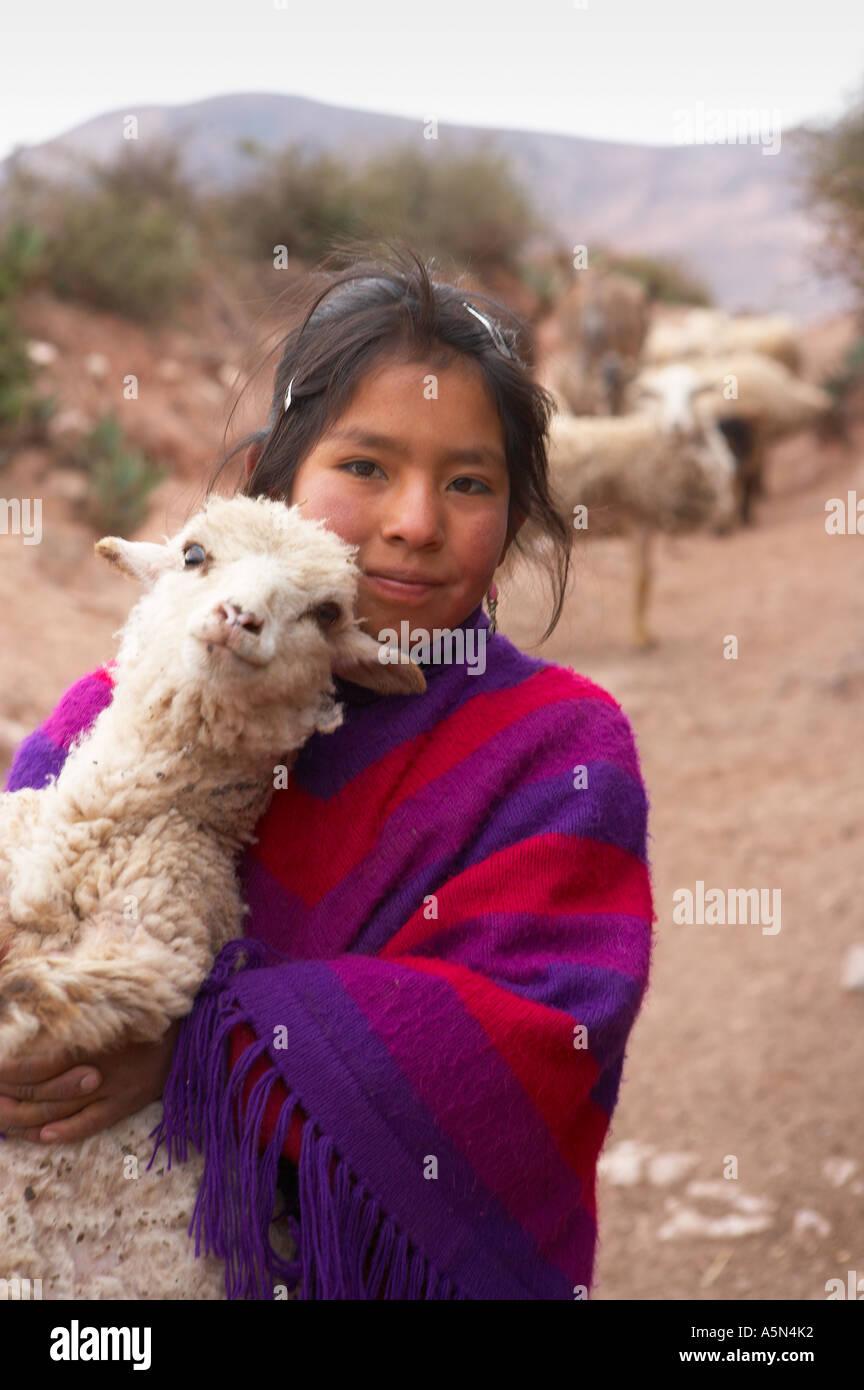 a Quechua shepherd girl Pampasmojo nr Marras above the Sacred Valley nr Cusco Peru - Stock Image