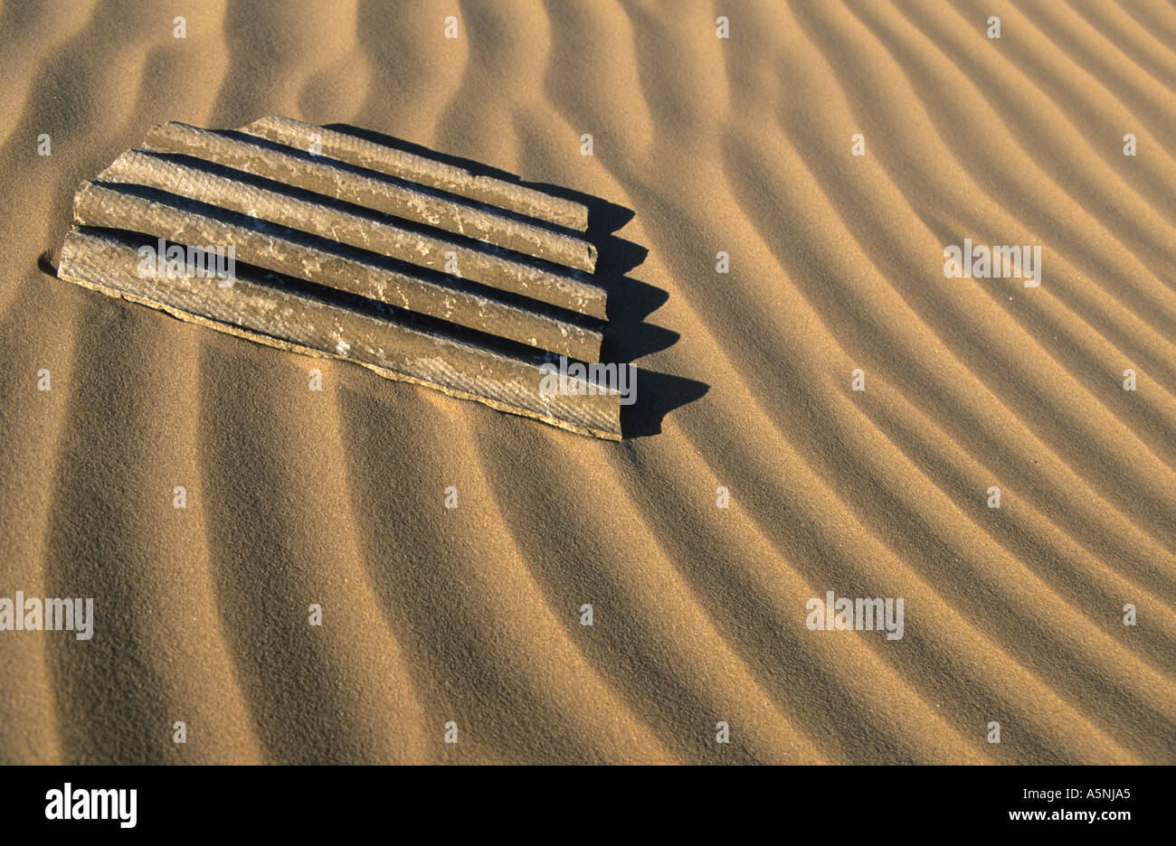 Rippled sand dunes in Namib desert with old piece of corrugated material Stock Photo
