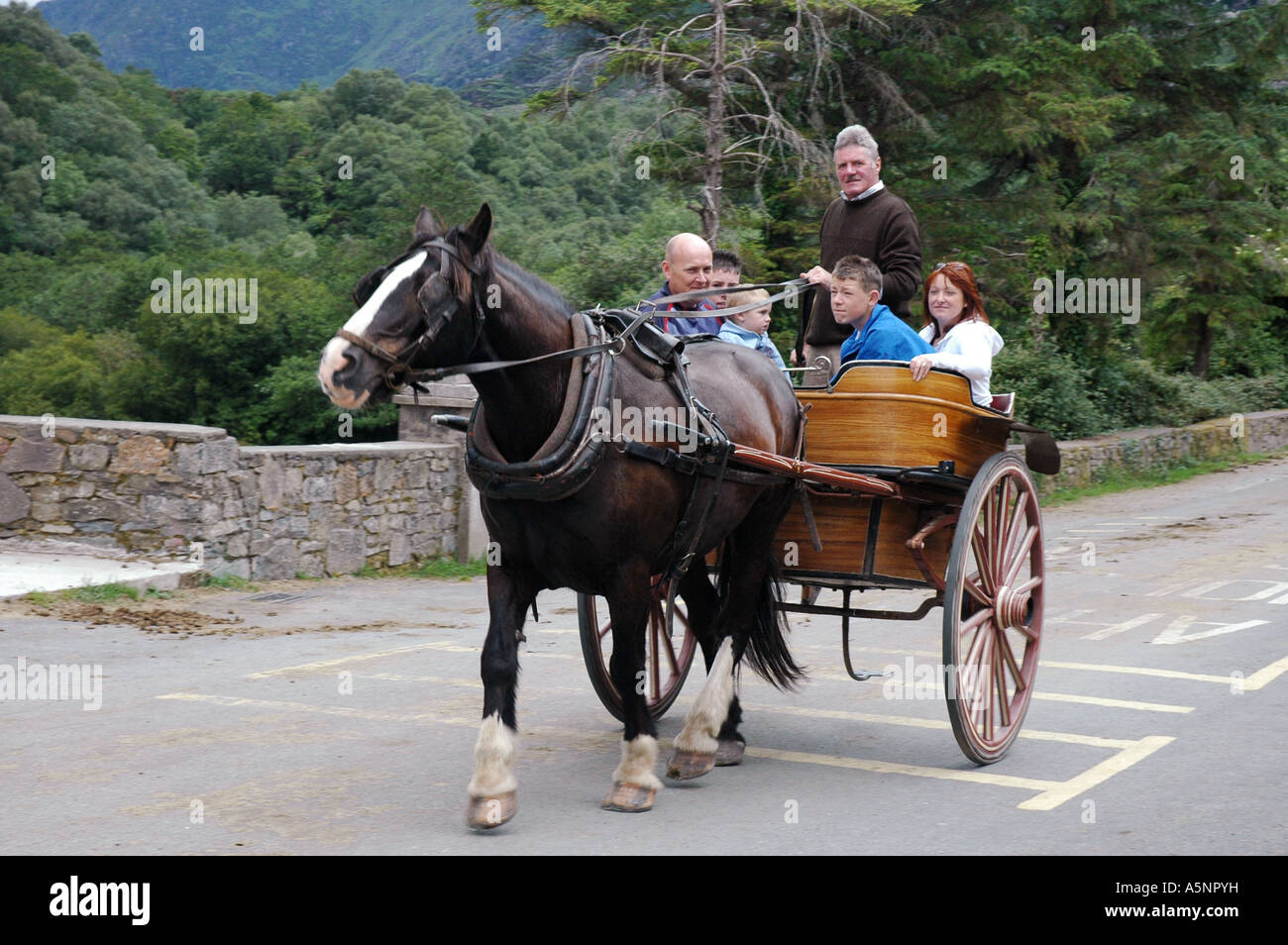 Pony and Trap, Gap of Dunloe, Killarney, Ireland - Stock Image