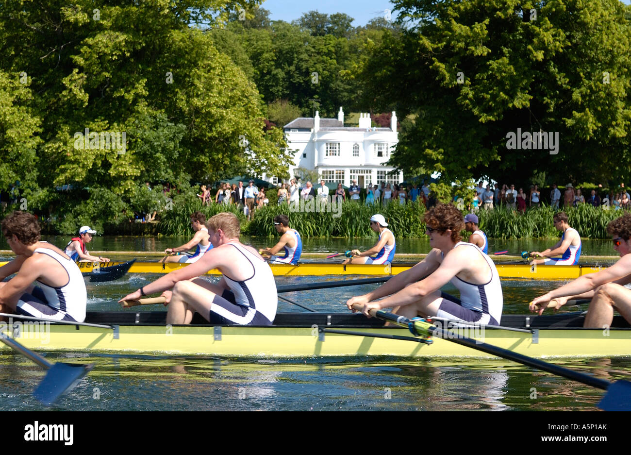Fours  racing down  the course at the Henley Royal Regatta - Stock Image
