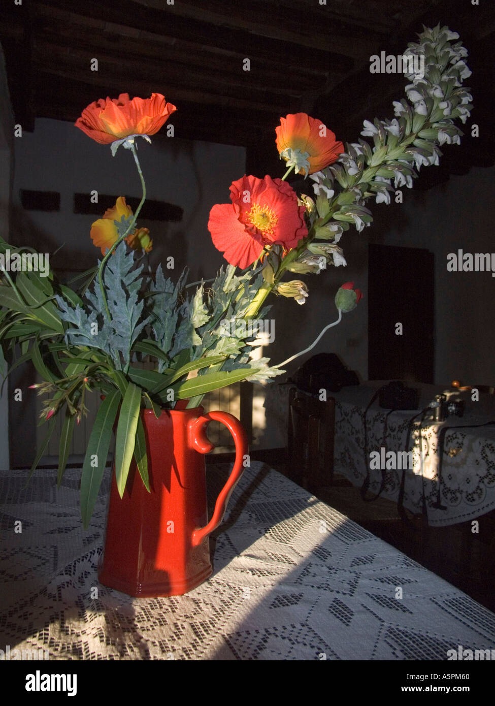 Flowers in a home in the village - Stock Image
