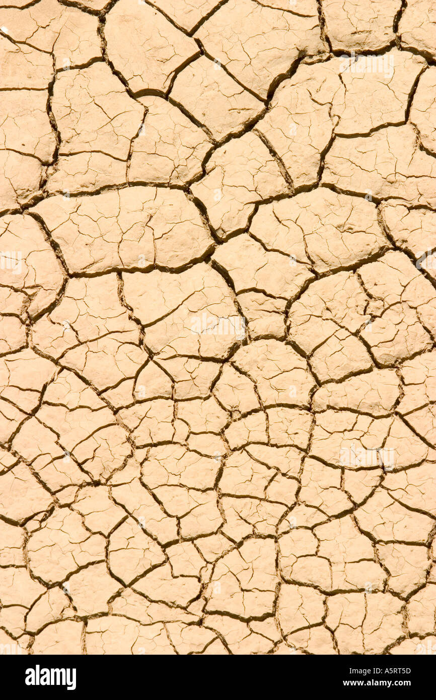Cracked, parched land during drought - Stock Image