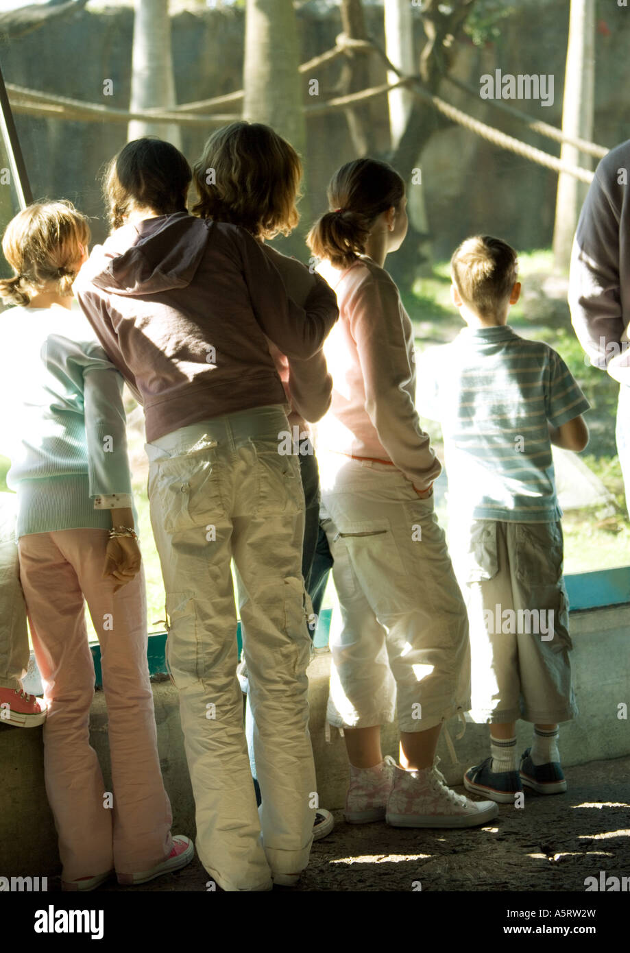 Group of children in zoo - Stock Image