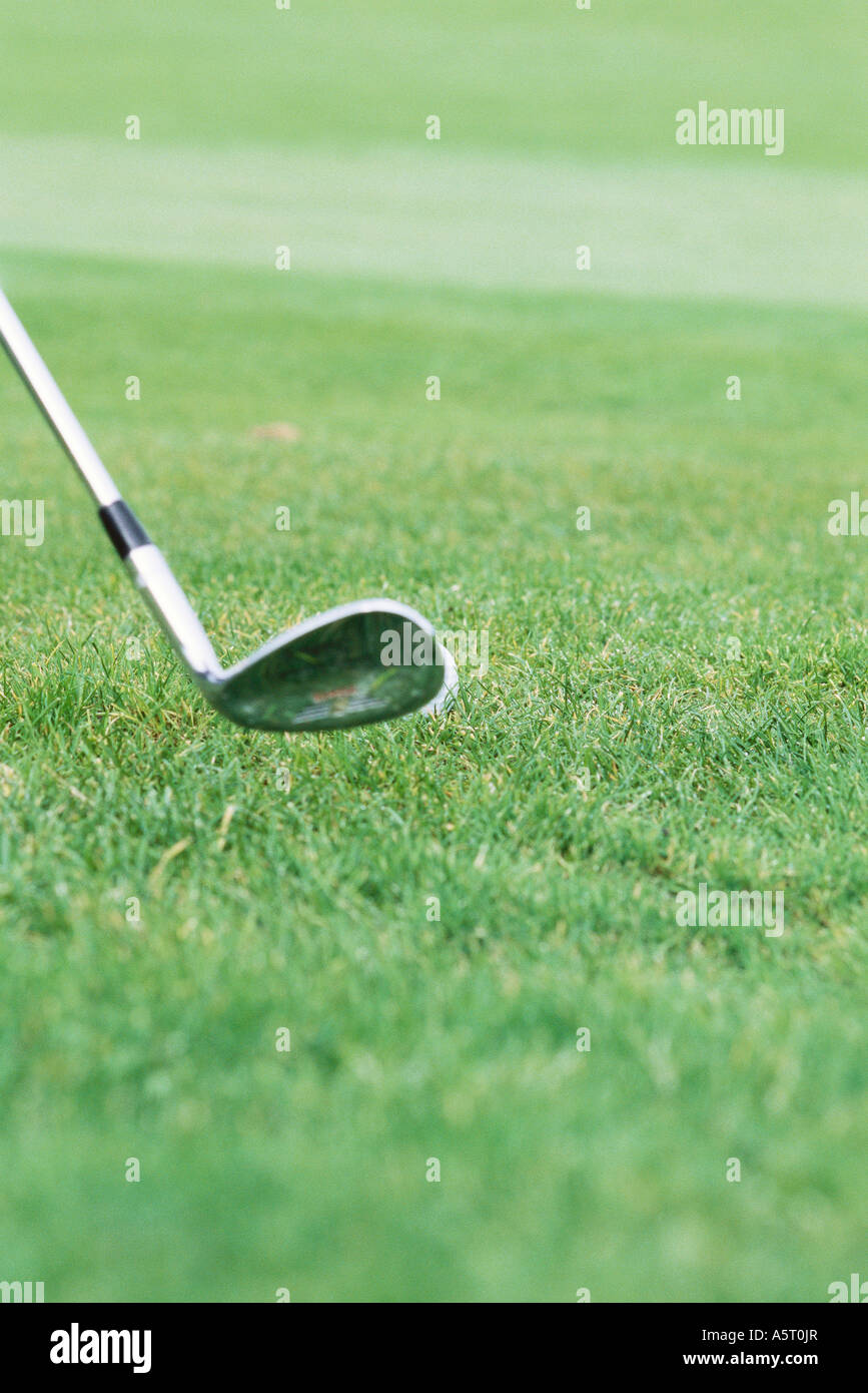 Golf club and green - Stock Image