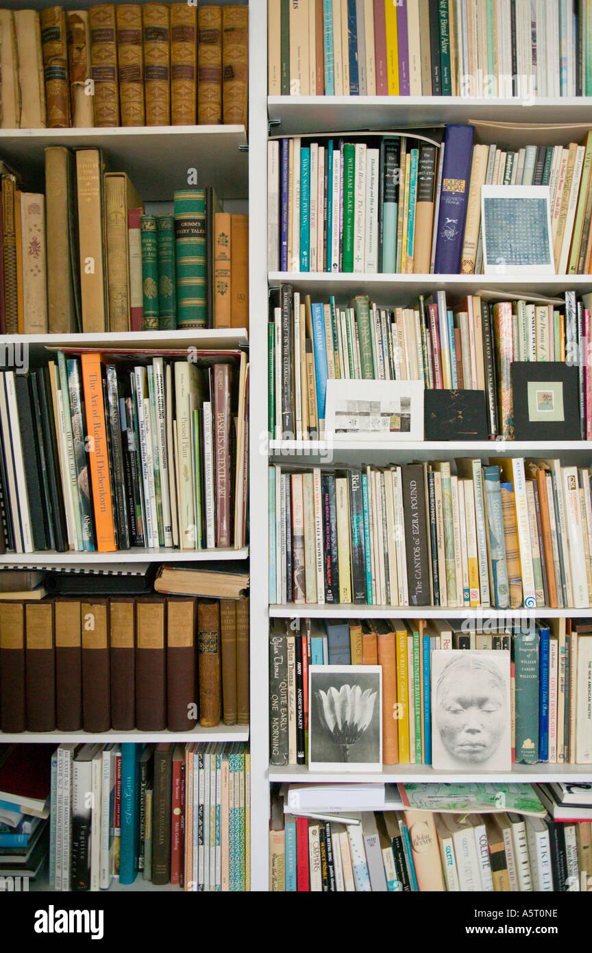 Bookshelves - Stock Image