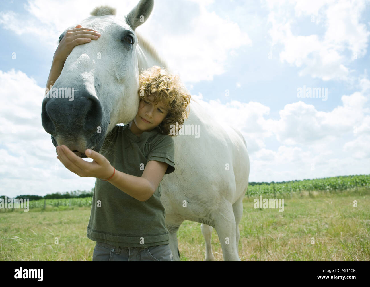 Boy standing with horse - Stock Image
