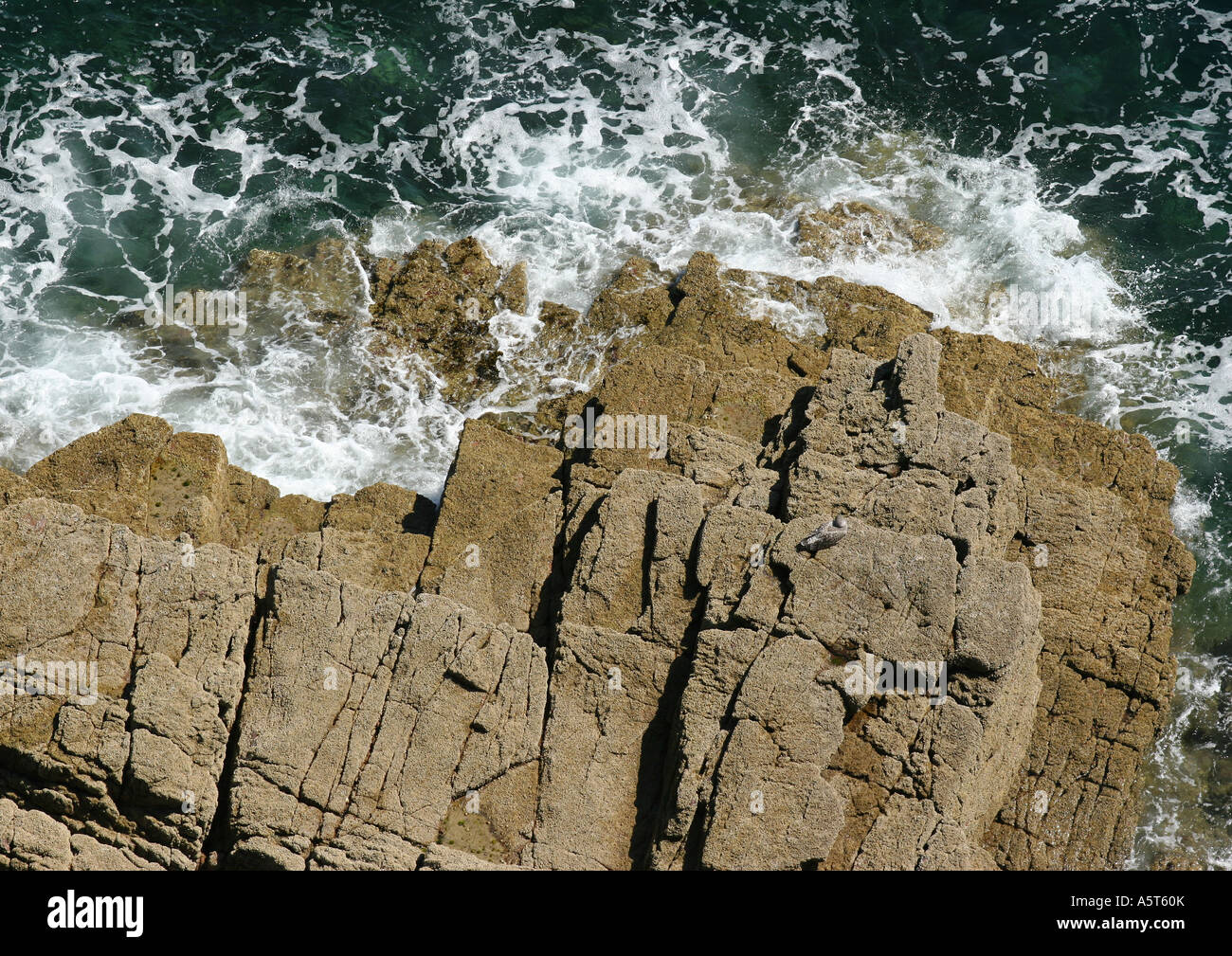 Ile de Brehat, Brittany, France, coastal rock formations, high angle view - Stock Image