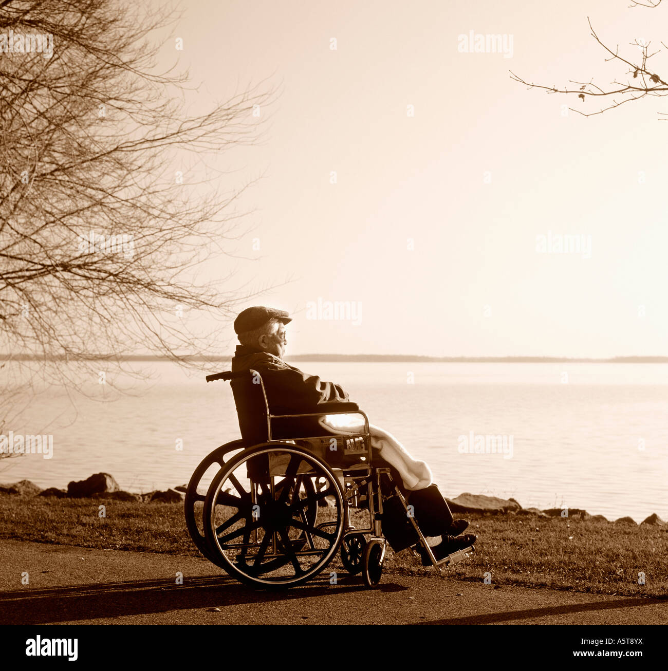 Elderly Man on a Wheelchair by the Lakeside - Stock Image