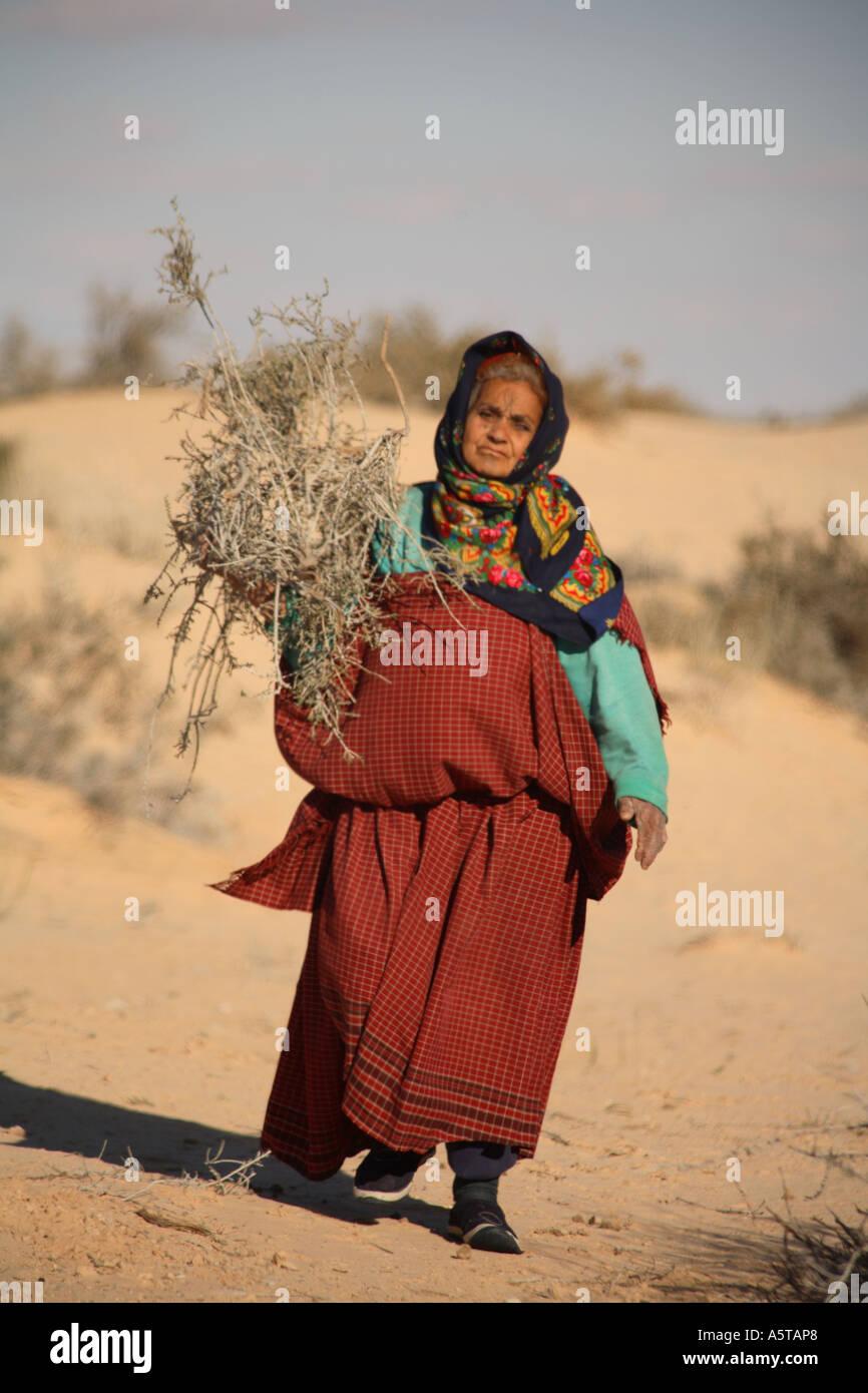 Vertical portrait of elderly berber woman collecting firewood in Sahara desert, Tunisia, North Africa - Stock Photo