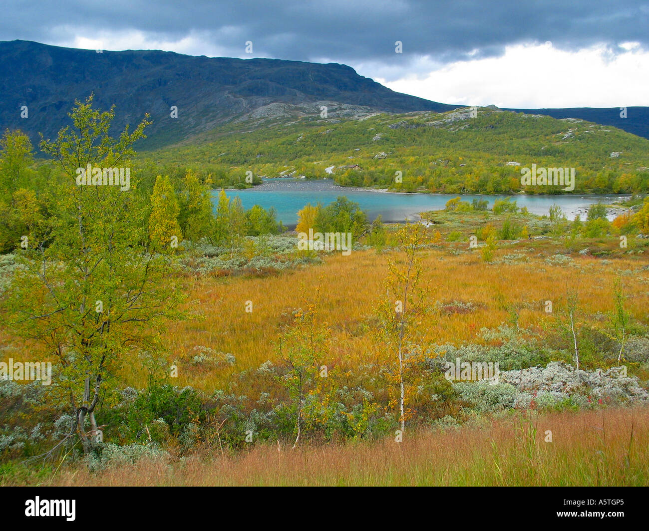The turning of the seasons Indian summer Jotunheimen Norway - Stock Image