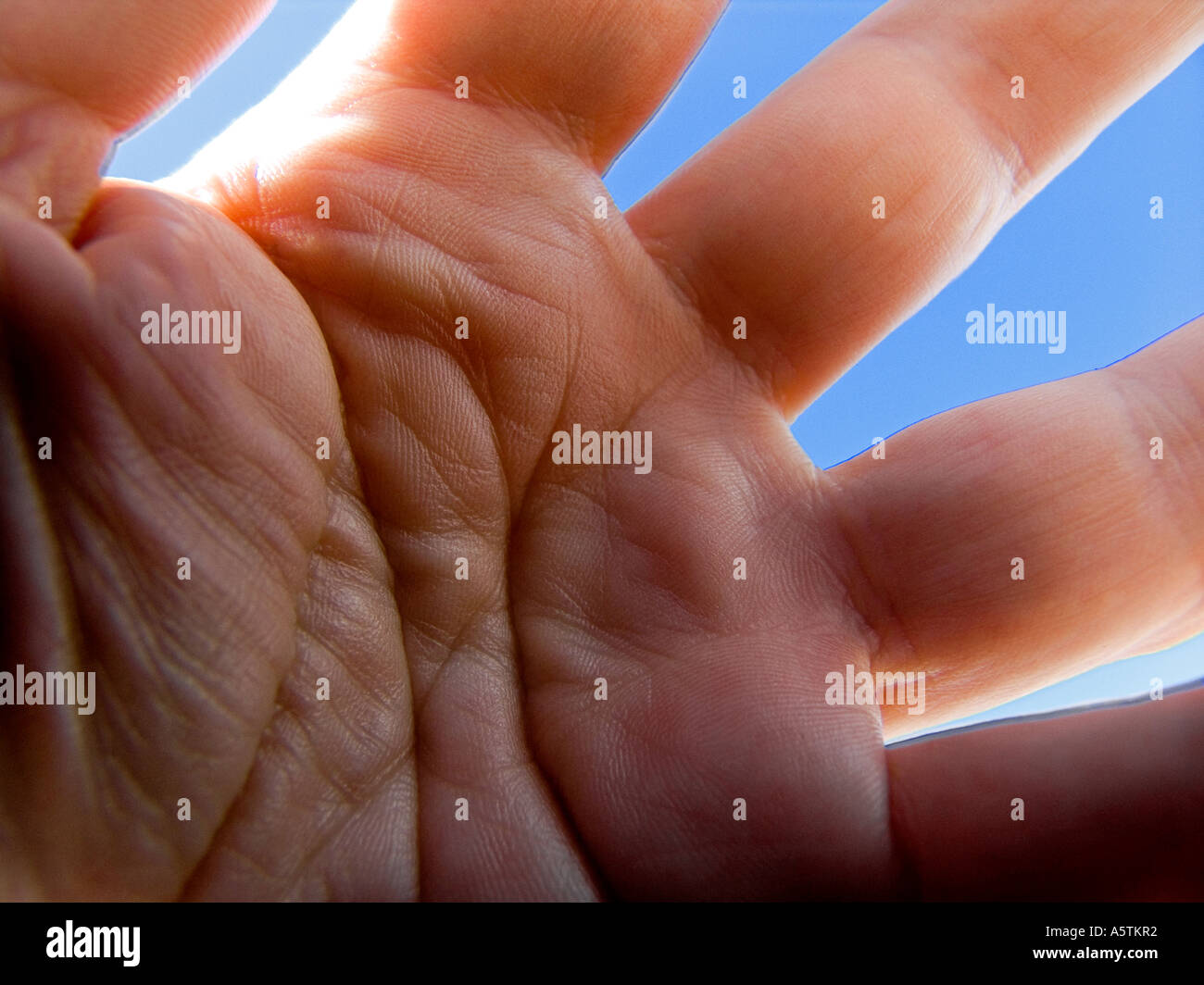 Close up of palm of male hand against blue sky - Stock Image