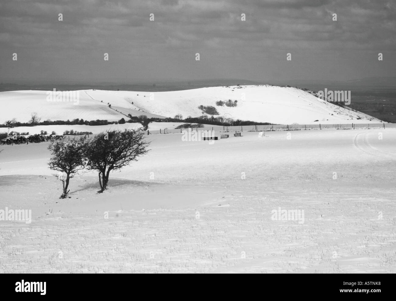 Snowy landscape on the South downs Sussex, England. - Stock Image
