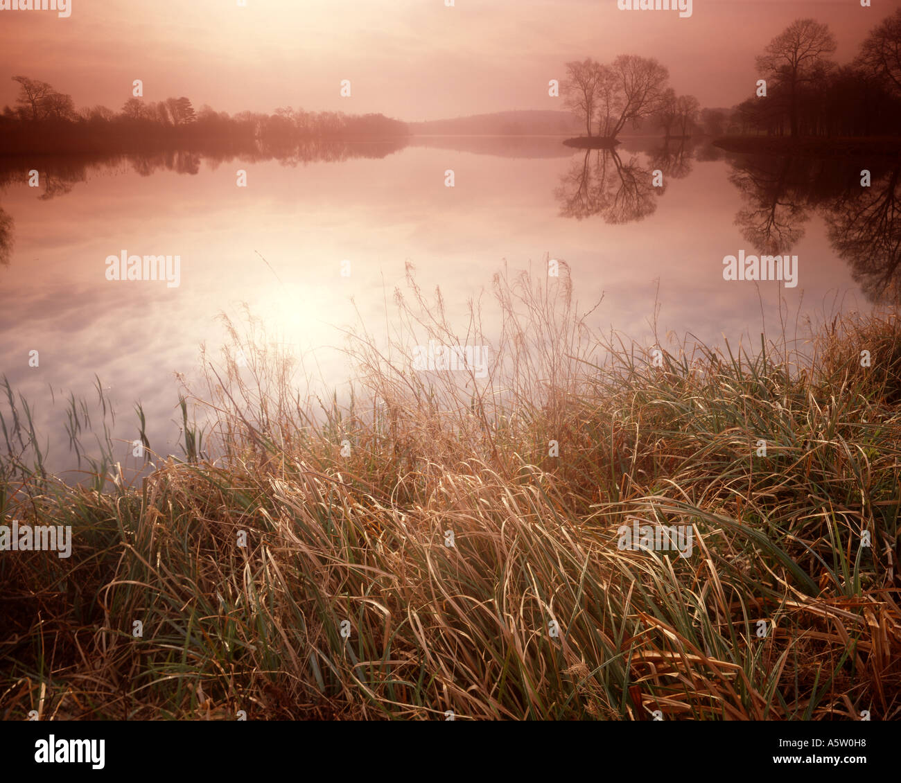 GB - NORTH YORKSHIRE:  Autumn Morning at the Lake at Castle Howard Stock Photo