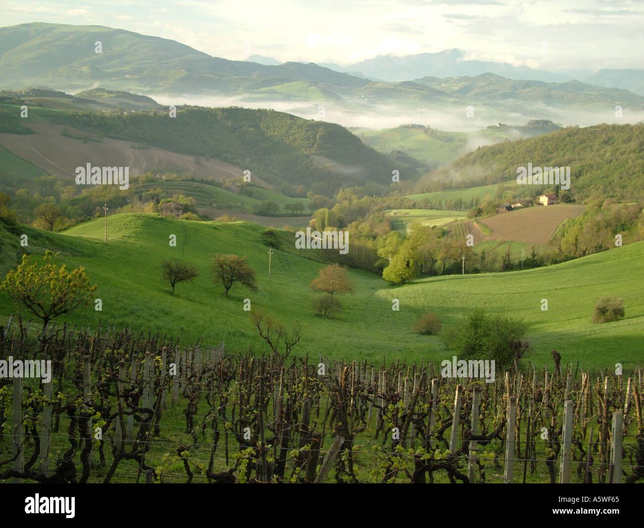 AJD36519, Marche, Italy, Urbino, Europe - Stock Image