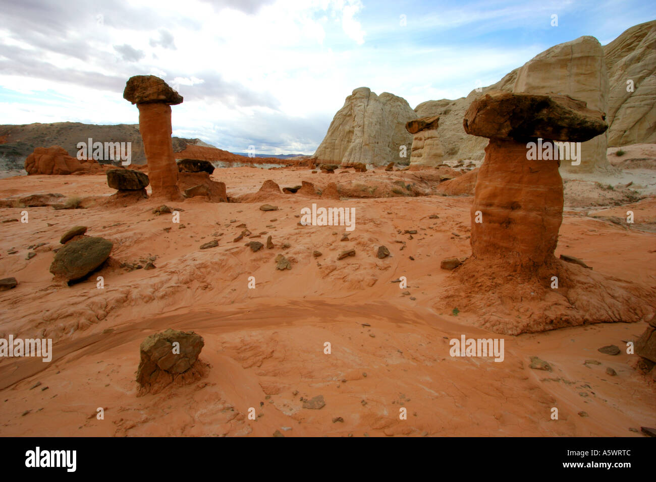 toadstool hoodoos  the rimrocks grand staircase escalante national monument utah Stock Photo