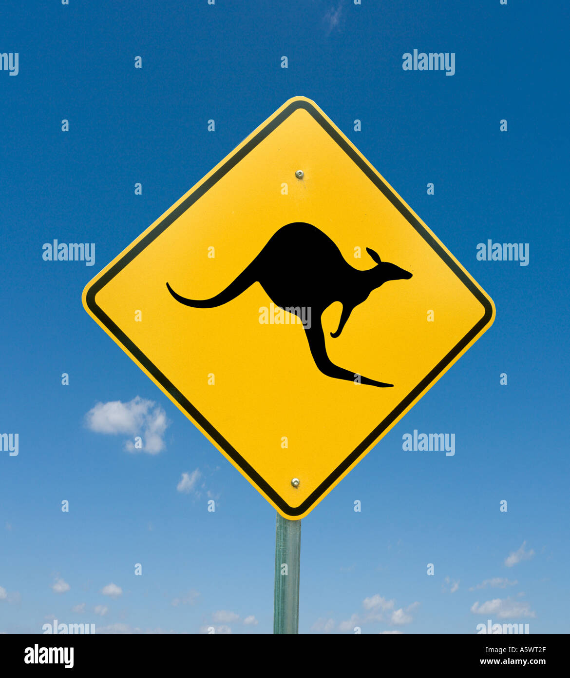 Kangaroo road sign on a country road in New South Wales, Australia - Stock Image