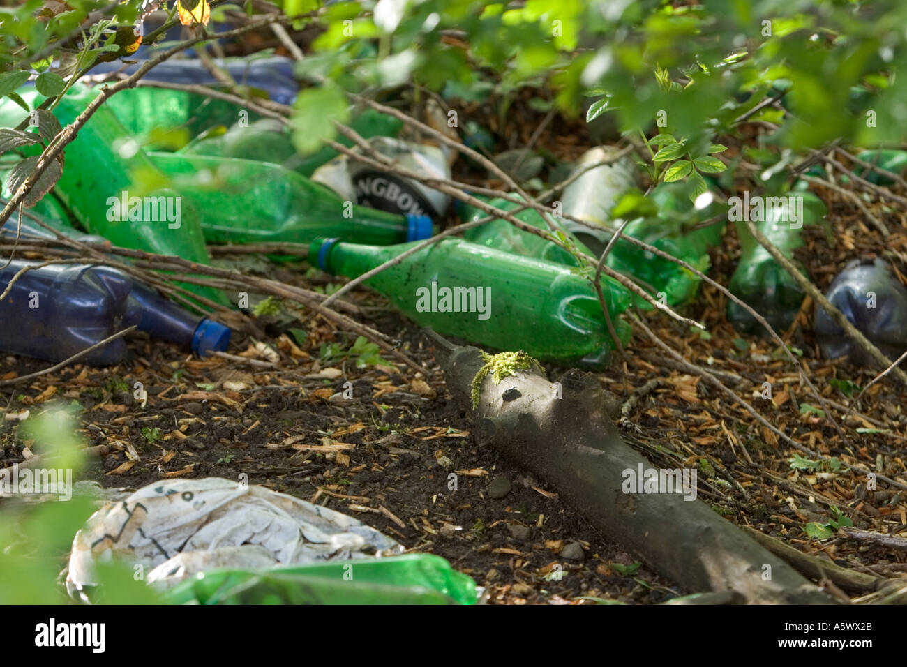 Plastic bottles rubbish thrown away dumped under hedgerow on canal towpath in radcliffe bury lancashire uk Stock Photo