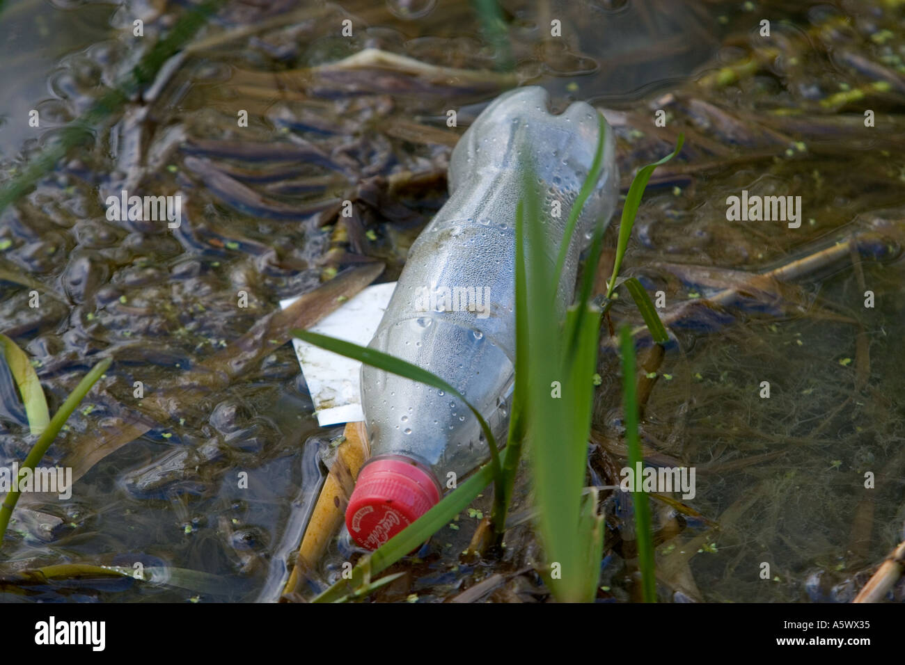 Plastic bottle rubbish thrown away dumped canal - Stock Image
