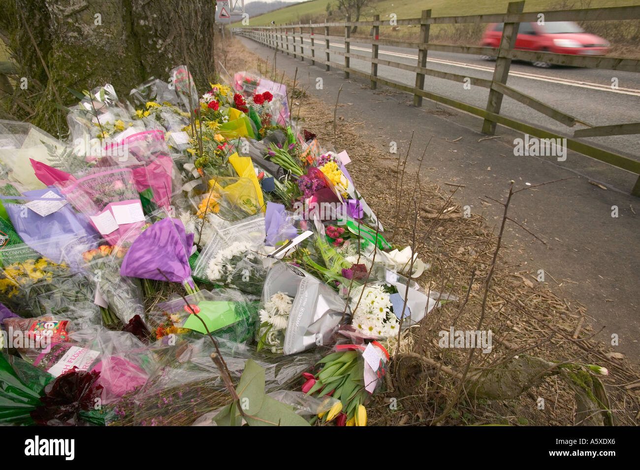floral tributes at the site of a fatal road traffic accident near windermere, Lake district, Cumbria, UK Stock Photo