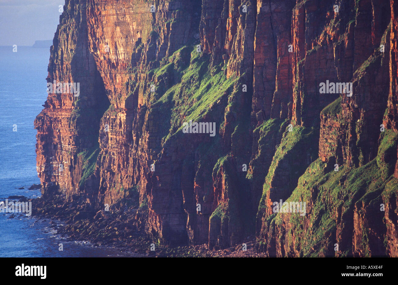 The sea cliffs of St Johns Head, Hoy, Orkney Isles, Scotland - Stock Image