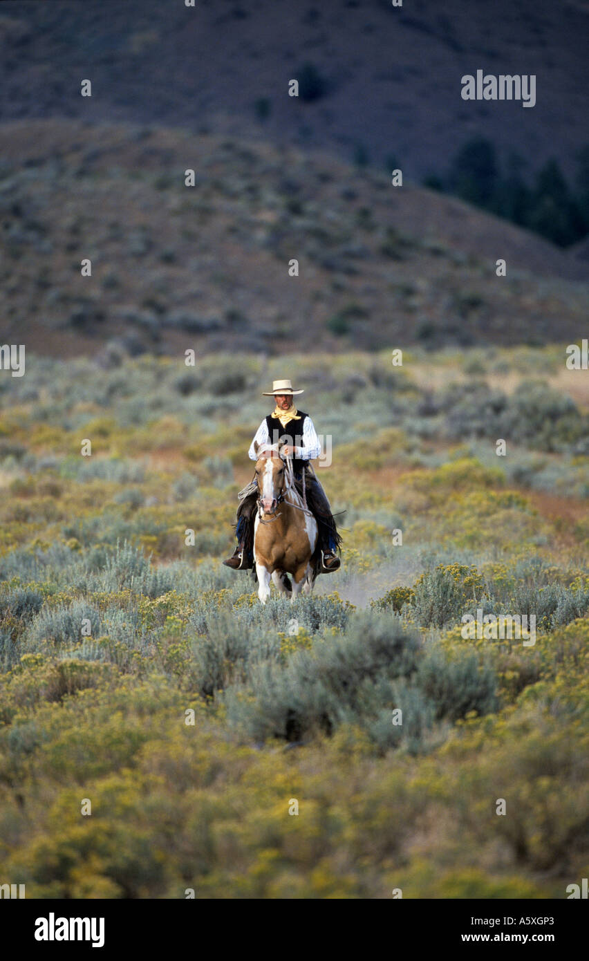 Cowboy riding in the Countryside Oregon USA - Stock Image