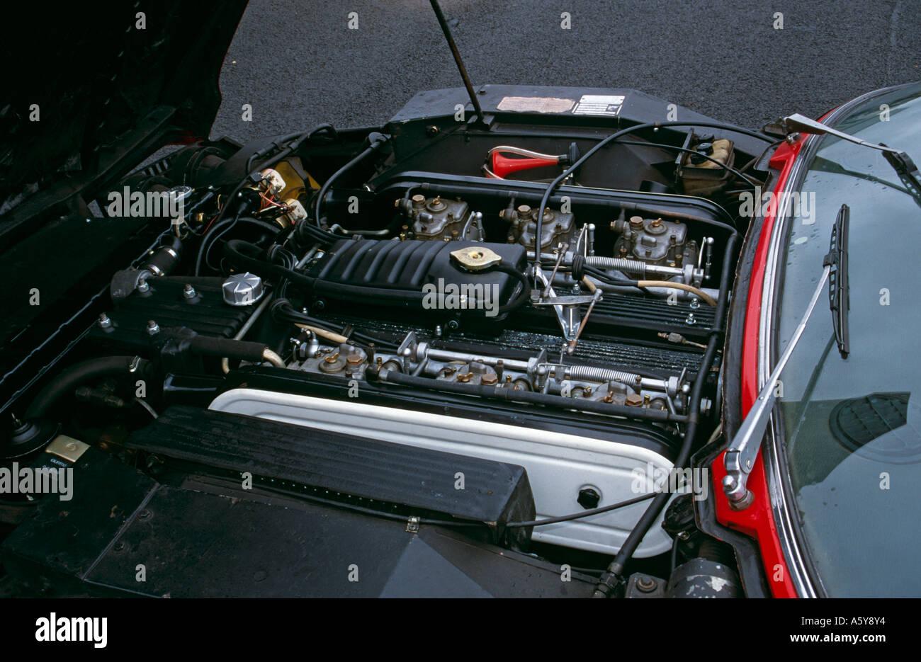 Lamborghini V12 Engine Stock Photos & Lamborghini V12 Engine