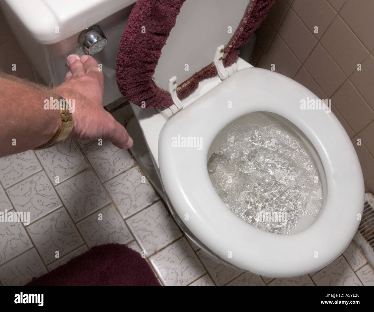 Flushing The Toilet Stock Photos & Flushing The Toilet Stock Images ...
