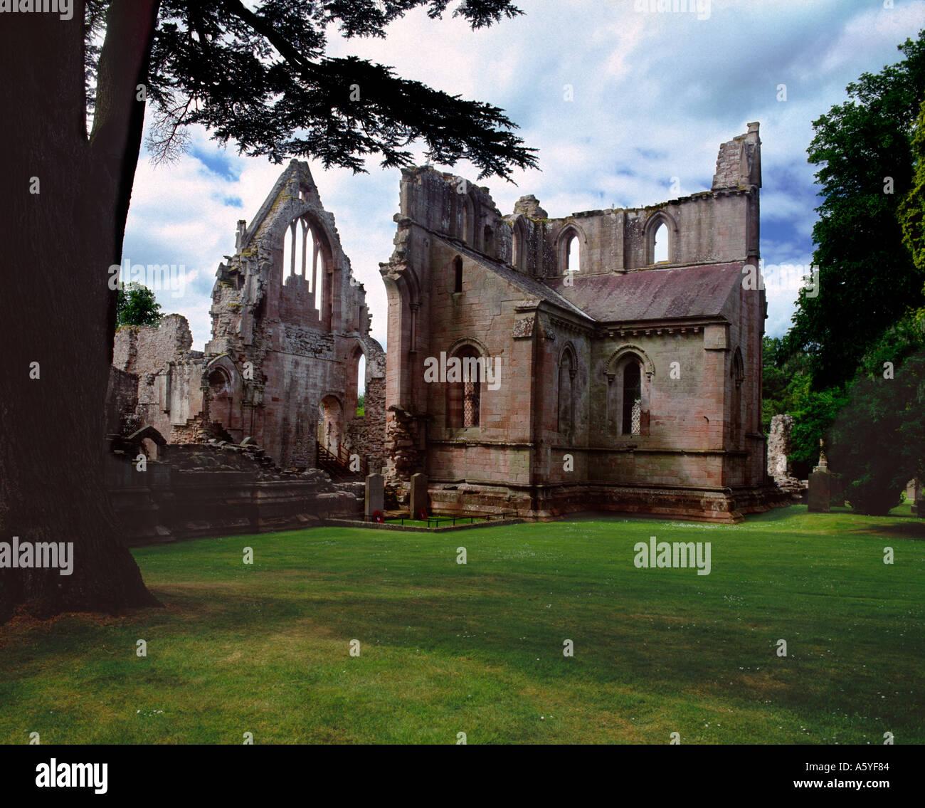 Dryburgh Abbey, Scottish Borders - Stock Image