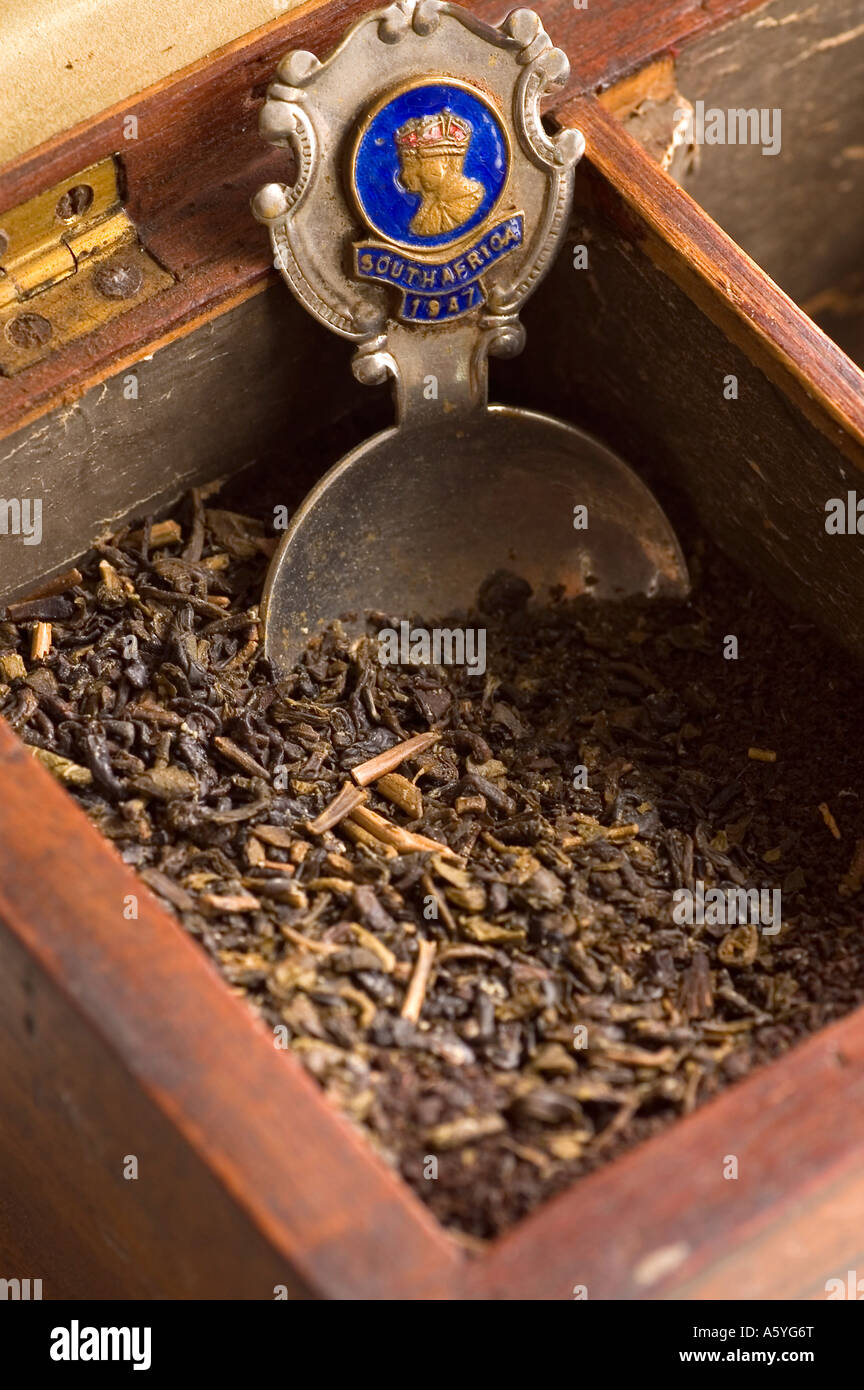 wooden box filled with tea with and old spoon - Stock Image