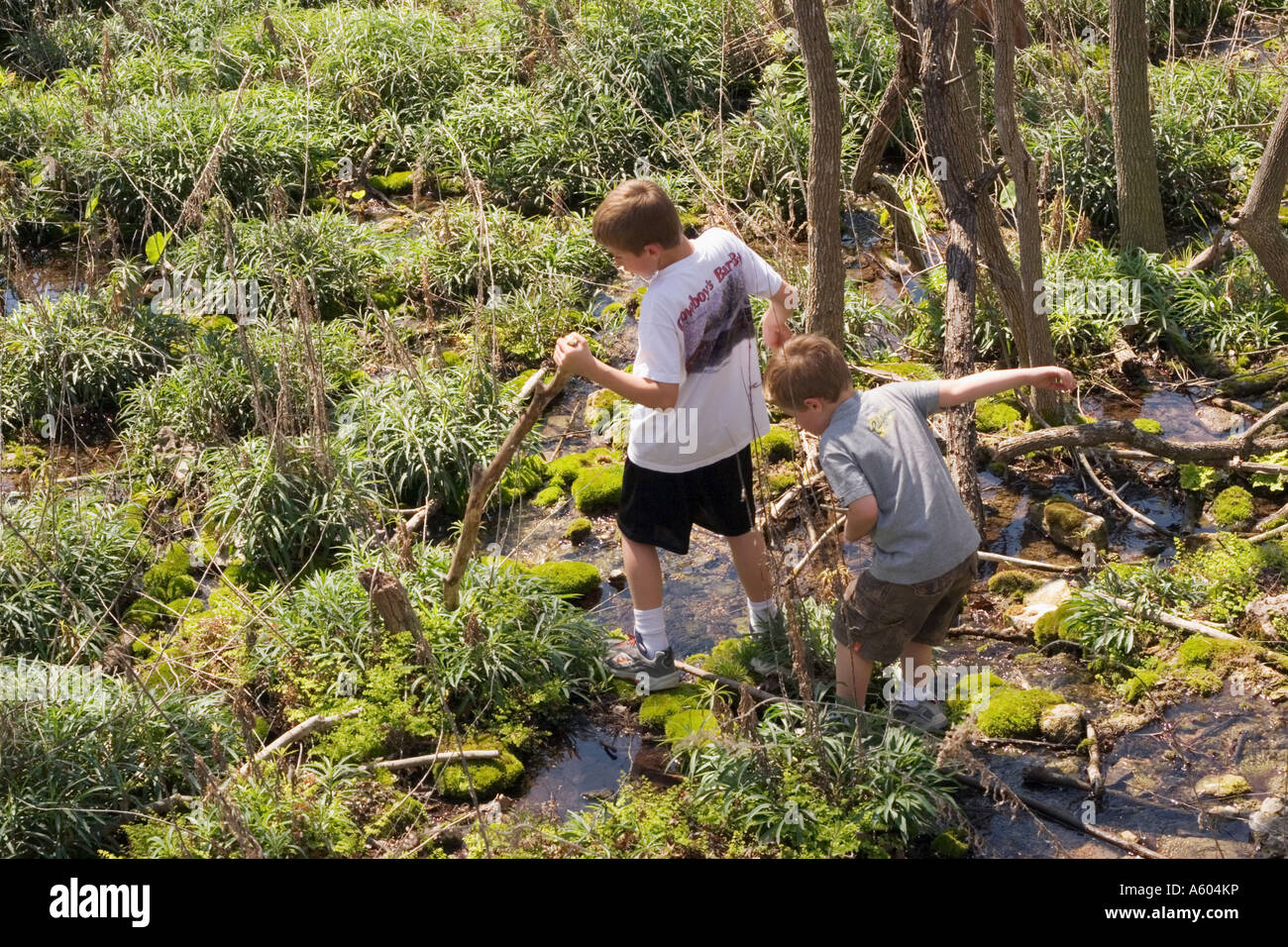 Two young brothers exploring a spring fed swamp while hiking - Stock Image