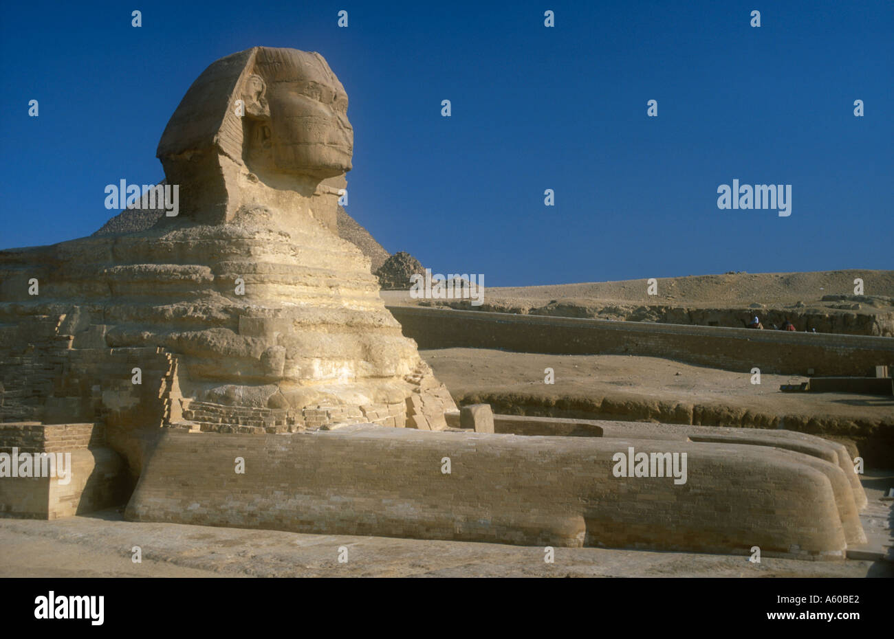 EGYPT Cairo Area Giza The Sphinx restored with Pyramids and tourists on camels in the background - Stock Image