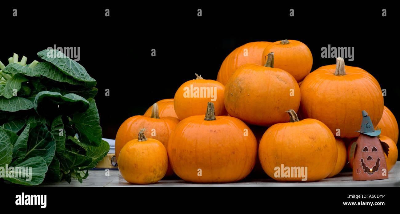 3e261527cbb2 Big 5 O Stock Photos & Big 5 O Stock Images - Alamy