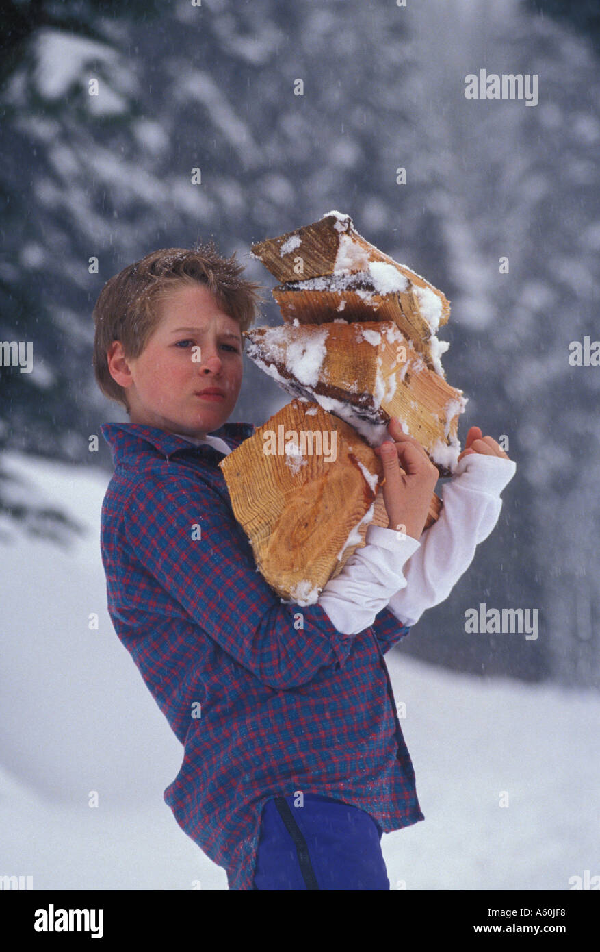 A twelve year old boy carries firewood during a snowstorm - Stock Image