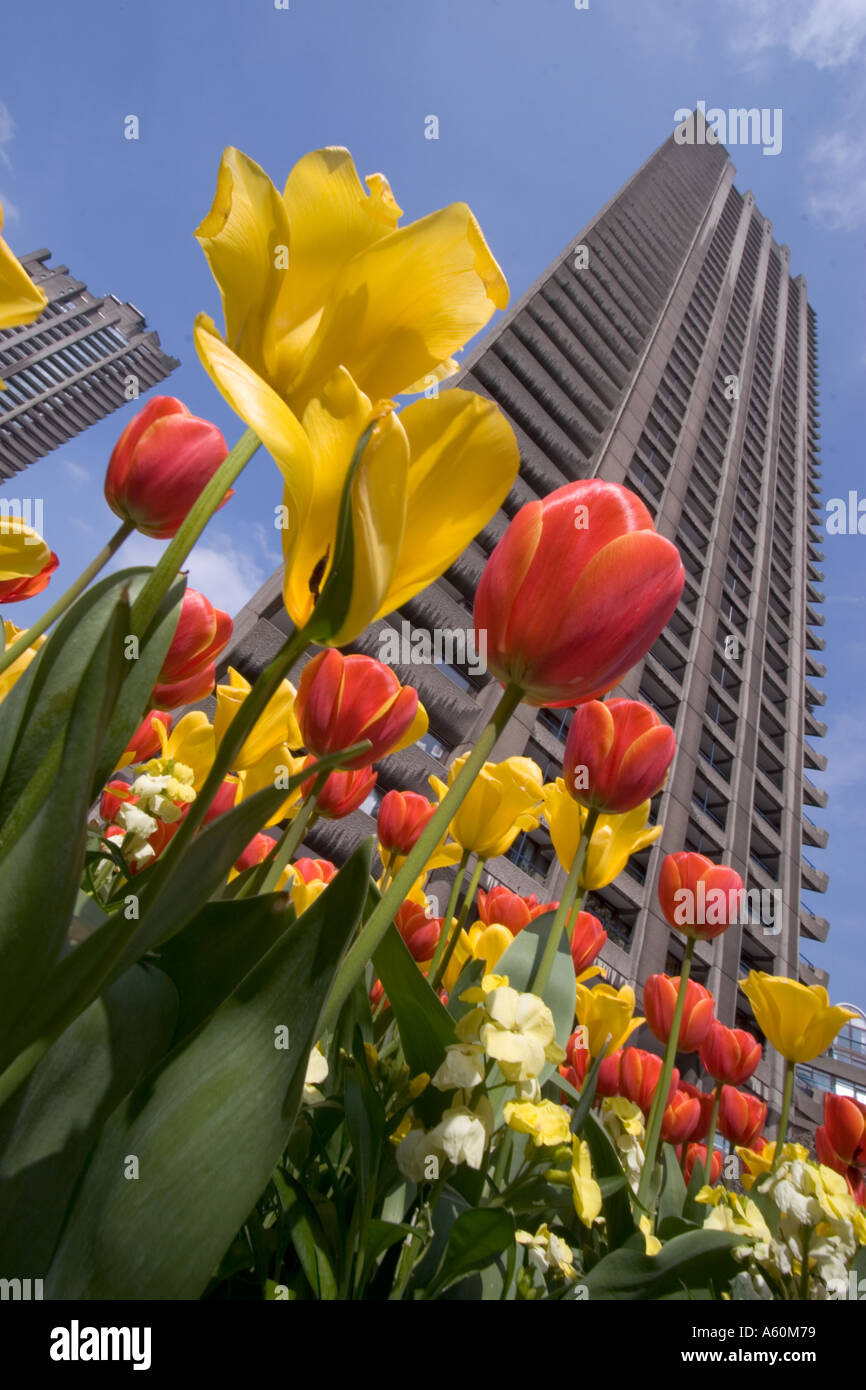 tower block barbican centre center central London with flowers in foreground - Stock Image