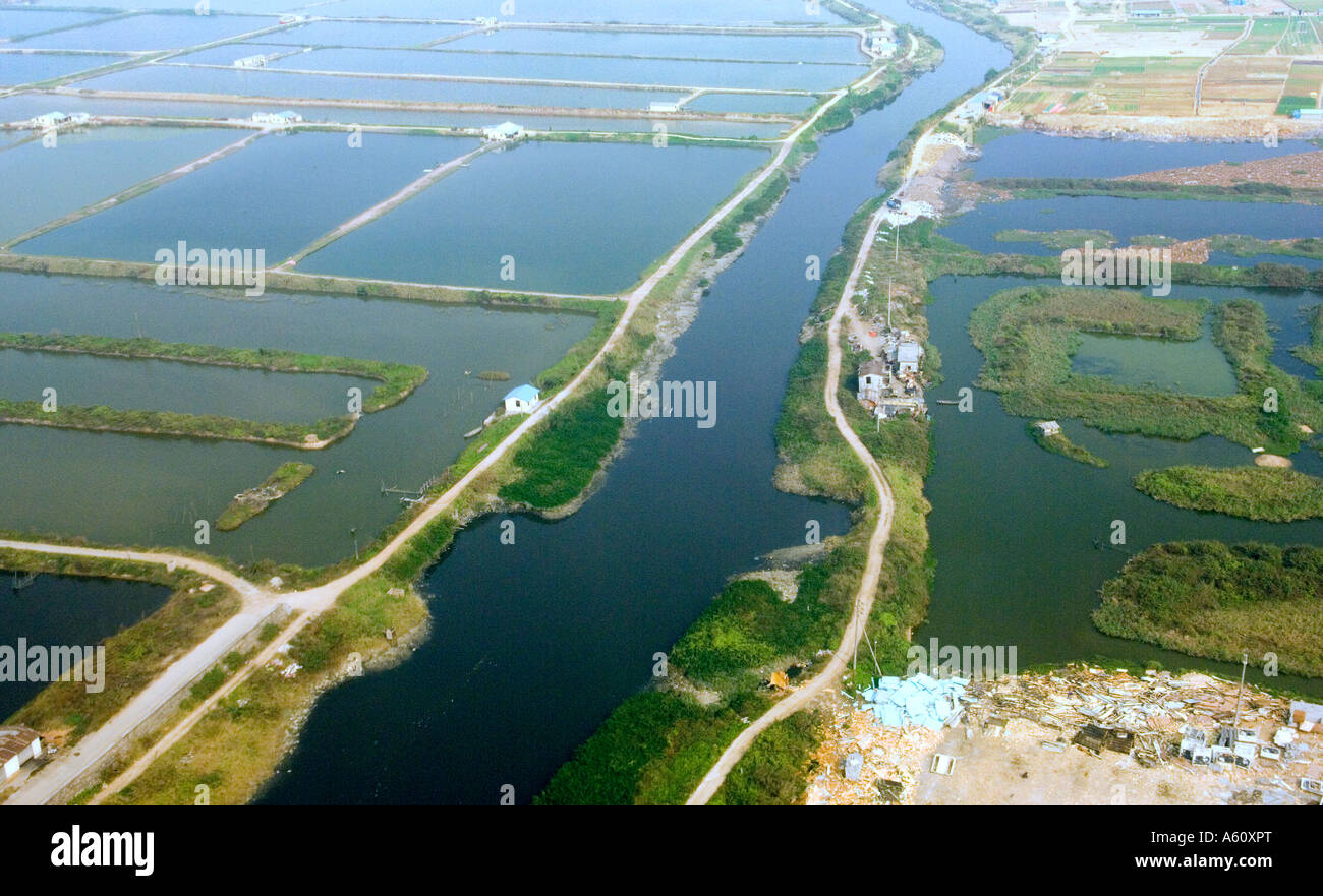 Aquaculture seafood fish farm farming ponds on the Pearl River Delta western edge of Shenzhen city, Guangdong Province - Stock Image