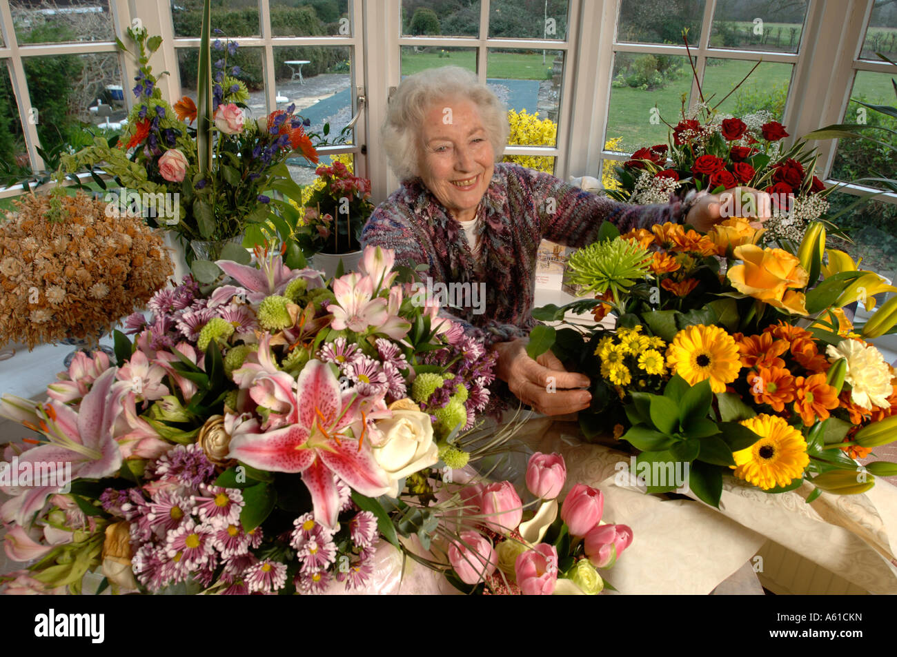Singer Dame Vera Lynn at home in Ditchling East Sussex on her 90th birthday - Stock Image