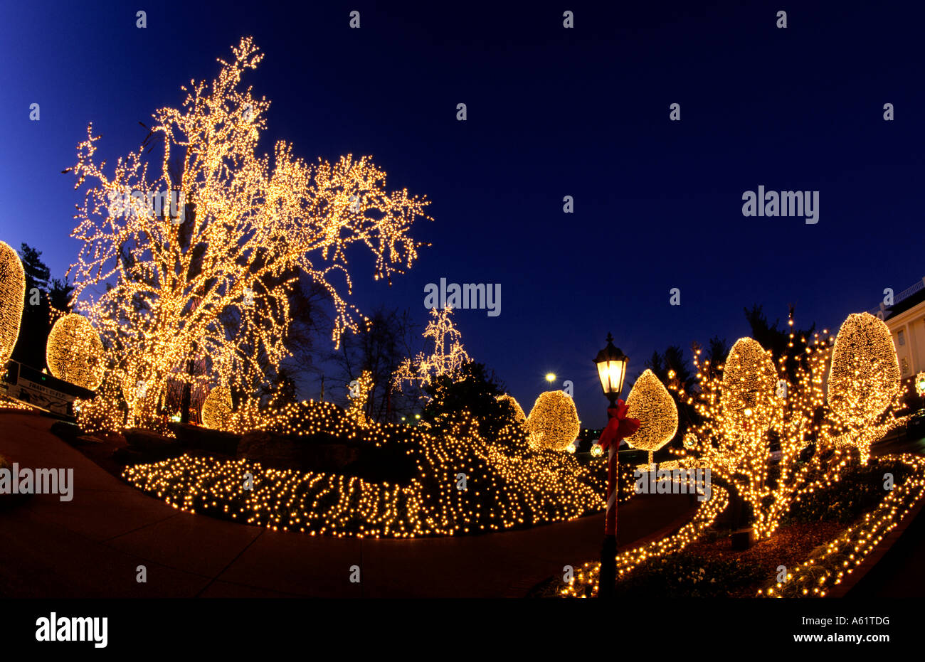 beautiful christmas decorations with lights at famous opryland hotel in nashville tennessee usa