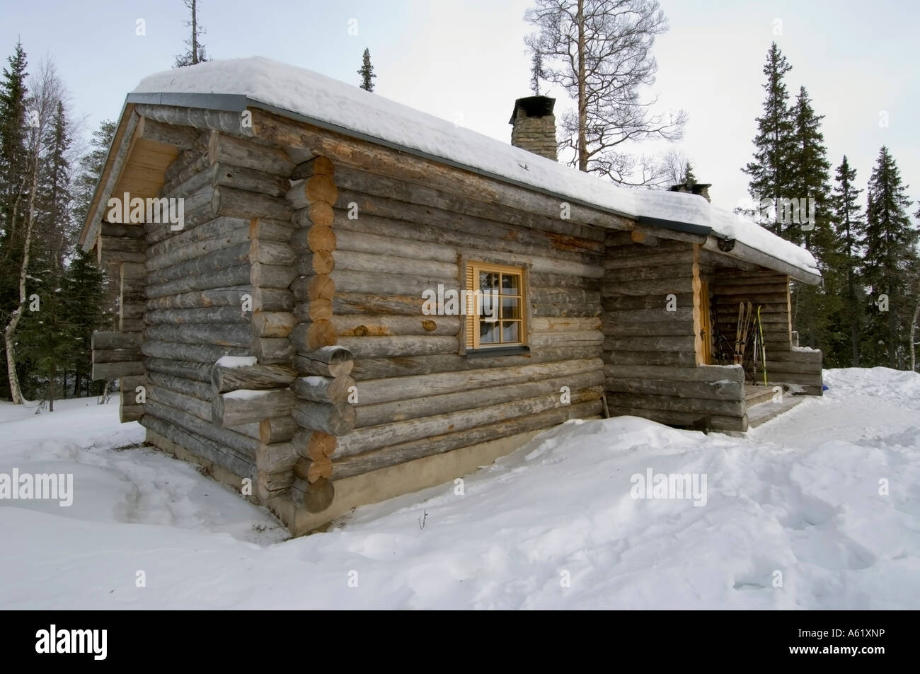 View Of A Traditional Log Cabin Luosto Lapland Northern