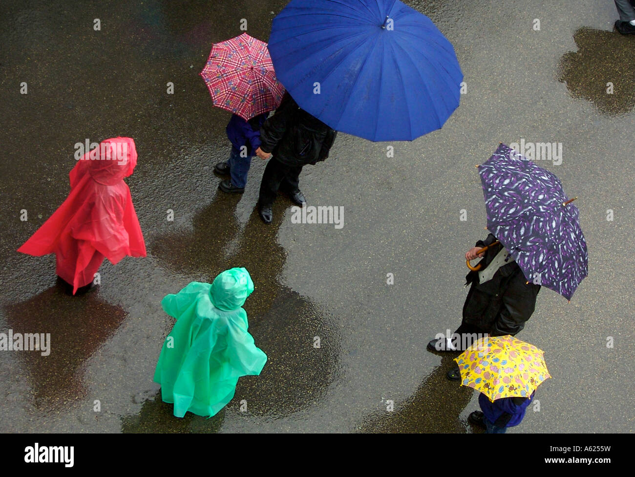 Spectators wearing rain ponchos and holding umbrellas brave the rain to watch the Passion precession in Chicago. - Stock Image