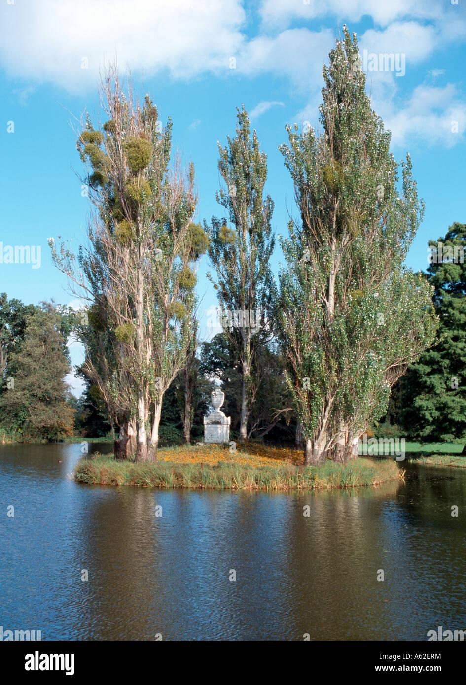 Wörlitz, Park, Rousseau-Insel, - Stock Image