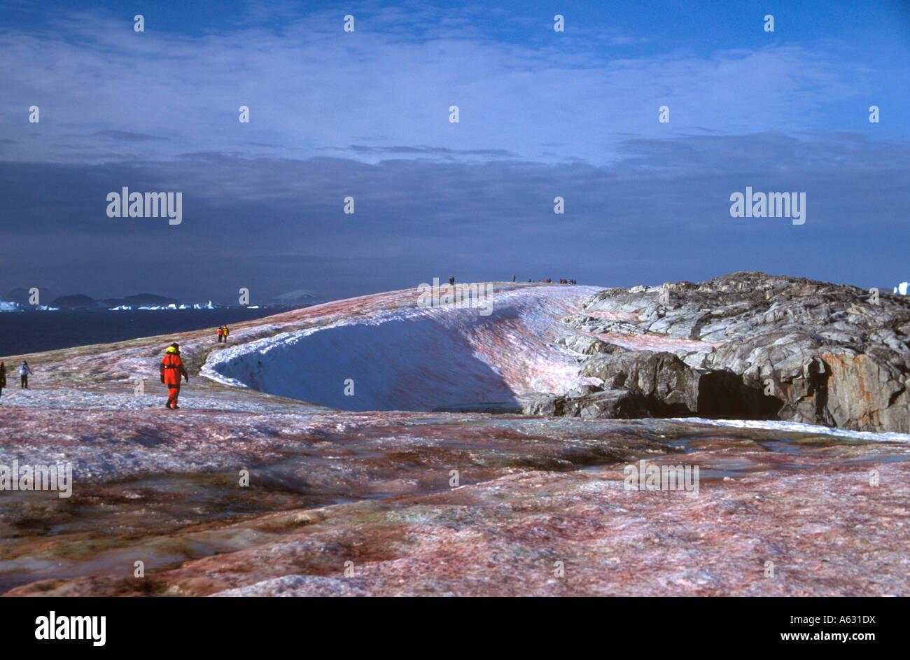 Walking on Petermann Island, Antarctica - Stock Image