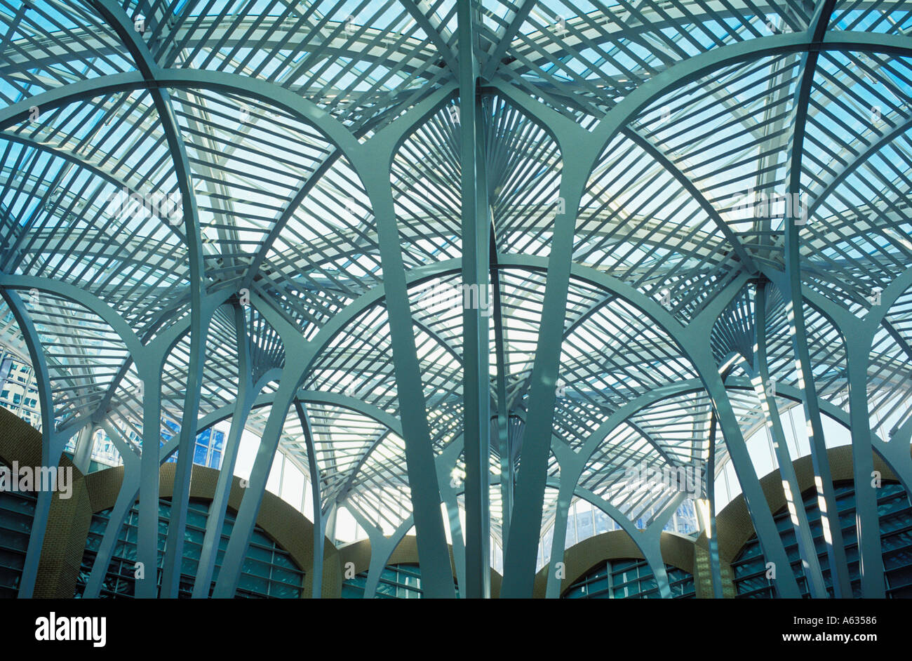 Canada Ontario Toronto, interior of BCE Place detail of roof structure - Stock Image