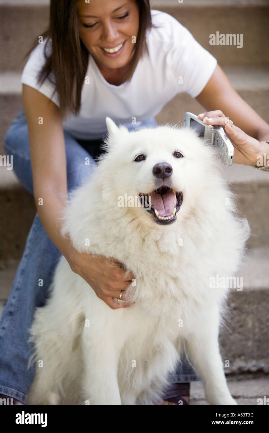 Phone message for doggy - Stock Image