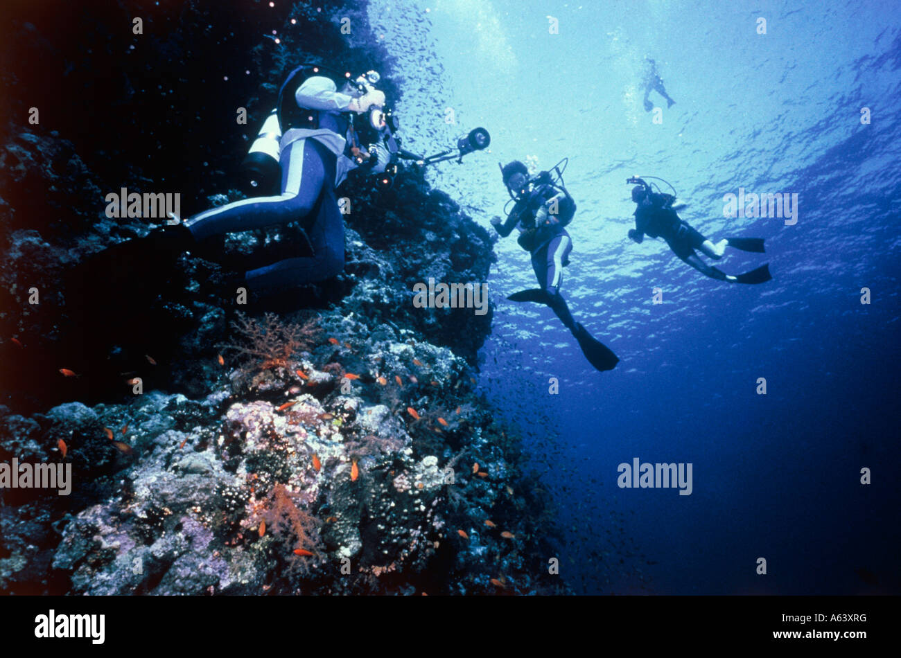 divers at slope of reef island of mwali comoros islands - Stock Image