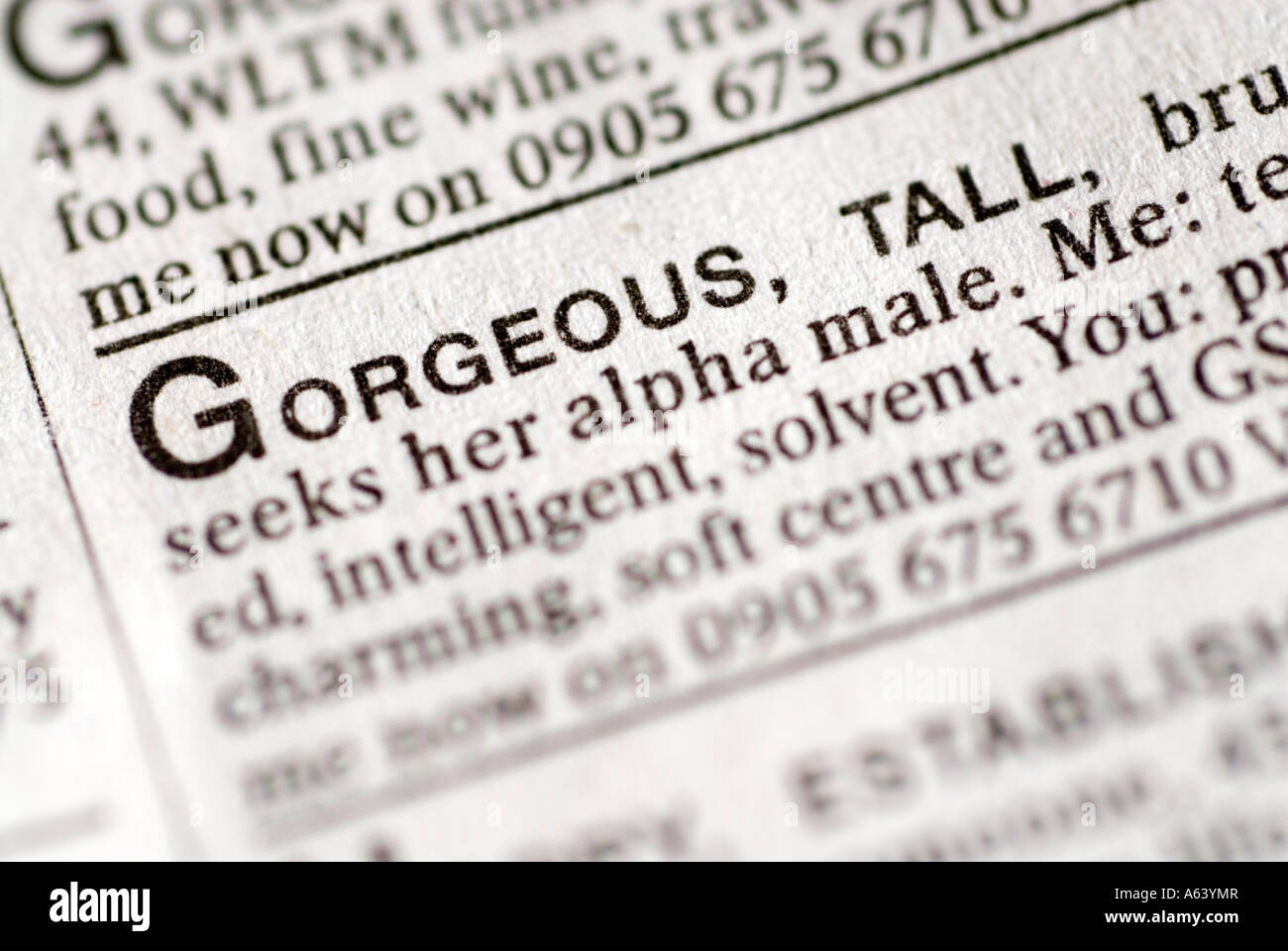Singles ad in dating pages of newspaper - Stock Image